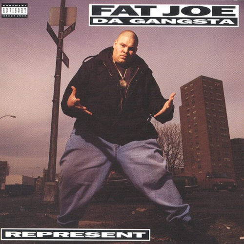 "FAT JOE ""REPRESENT"" (LP)"