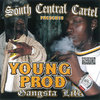 "SCC PRESENTS YOUNG PROD ""GANGSTA LIFE"" (NEW CD)"