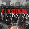 "C.I.N.SATIONAL MOBSTAS ""THE DEVIL RUNS MY CITY"" (NEW CD)"