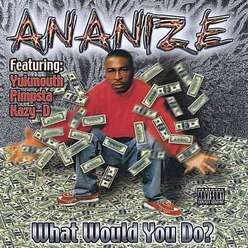 "ANANIZE ""WHAT WOULD YOU DO?"" (USED CD)"