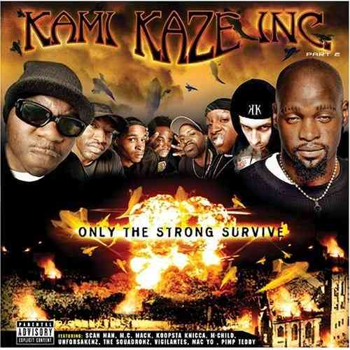 "KAMI KAZE INC. ""ONLY THE STRONG SURVIVE"" (USED CD)"