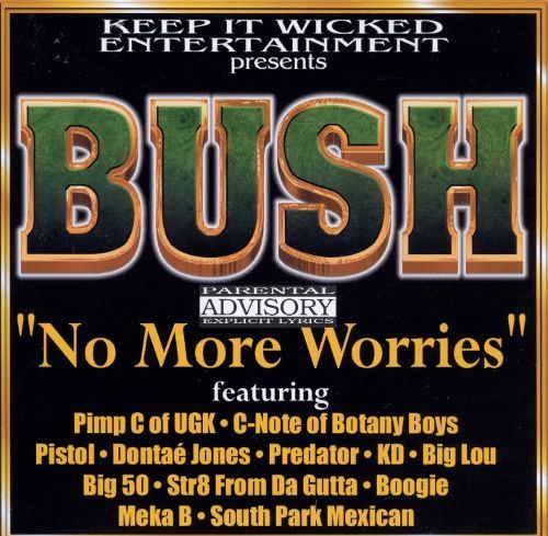 "BUSH ""NO MORE WORRIES"" (USED CD)"