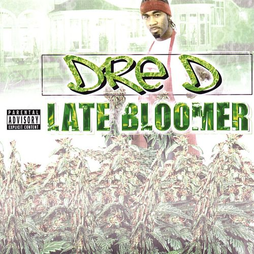 "DRE D ""LATE BLOOMER"" (USED CD)"