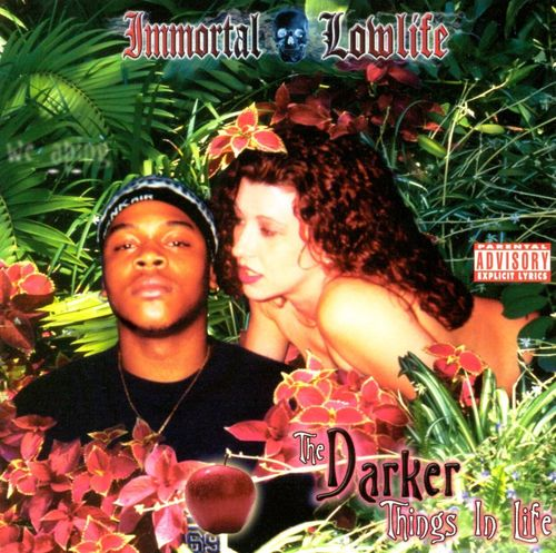 "IMMORTAL LOWLIFE ""THE DARKER THINGS IN LIFE: CHAPTER 2"" (USED CD)"
