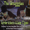 "THA SMUGGGLAS ""LITTLE WACO WIDE OPEN"" (USED CD)"