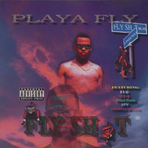"PLAYA FLY ""FLY S_HIT"" (USED CD)"